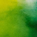 ciruclo-das-cores-4