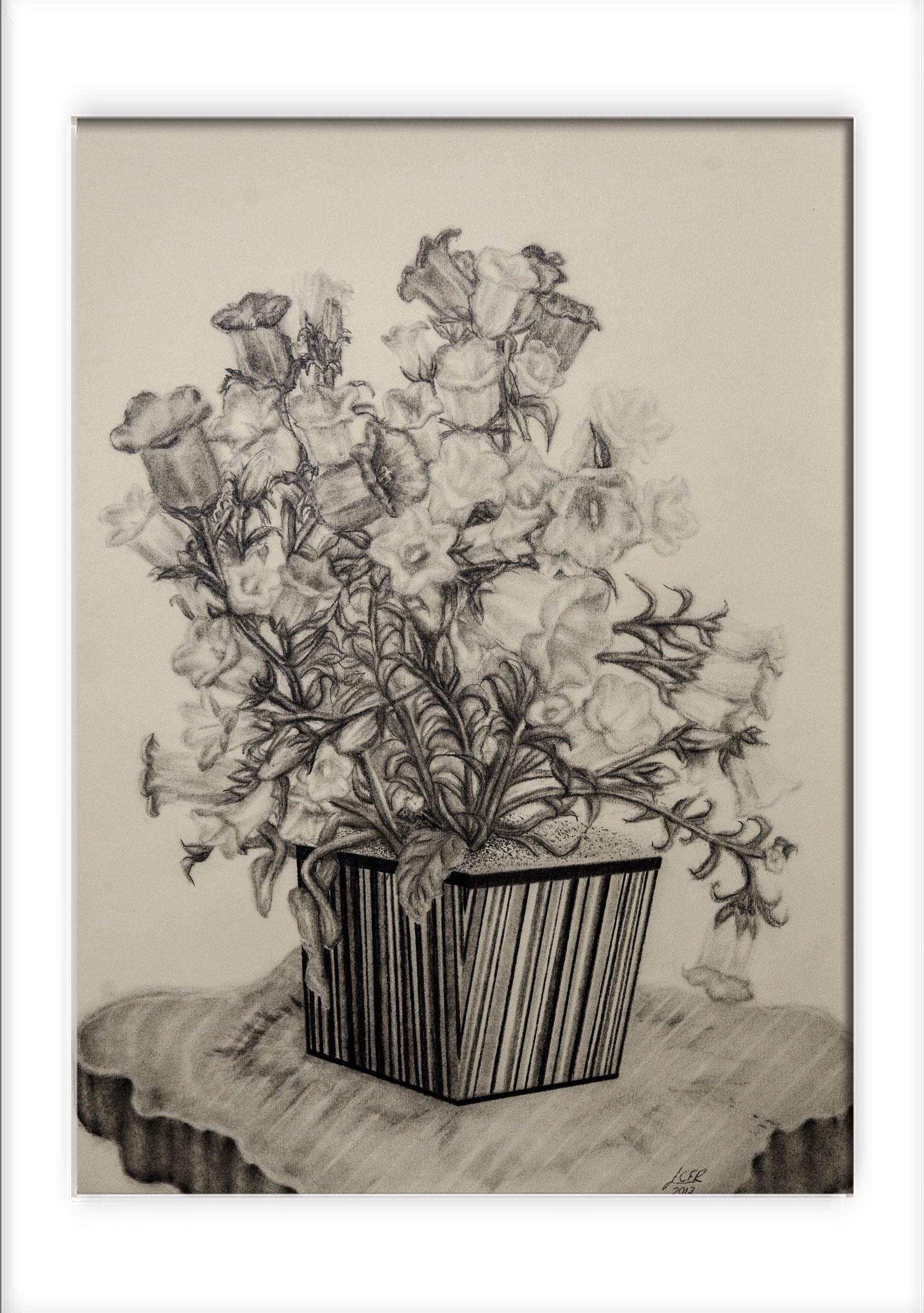 flores-grafite