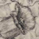 vaso-grafite-2