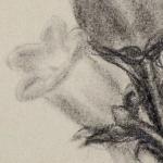 vaso-grafite-3